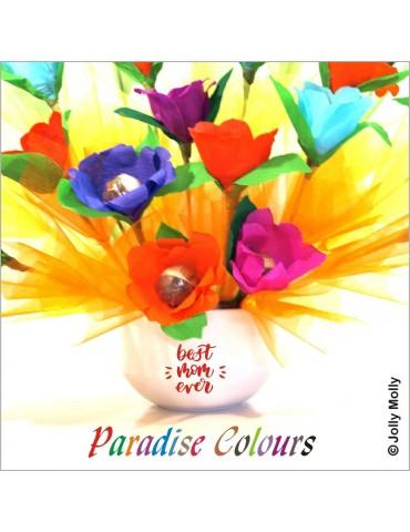 Paradise Colours